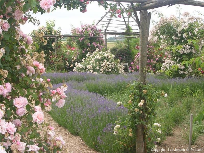 Les jardins de roquelin mon chouchou de cette saison parmi for Jardin remarquable 2015