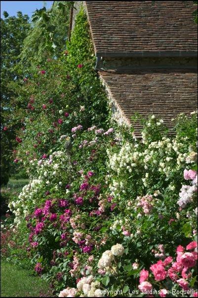 Le jardin les jardins de roquelin for Le jardin d agathe 19